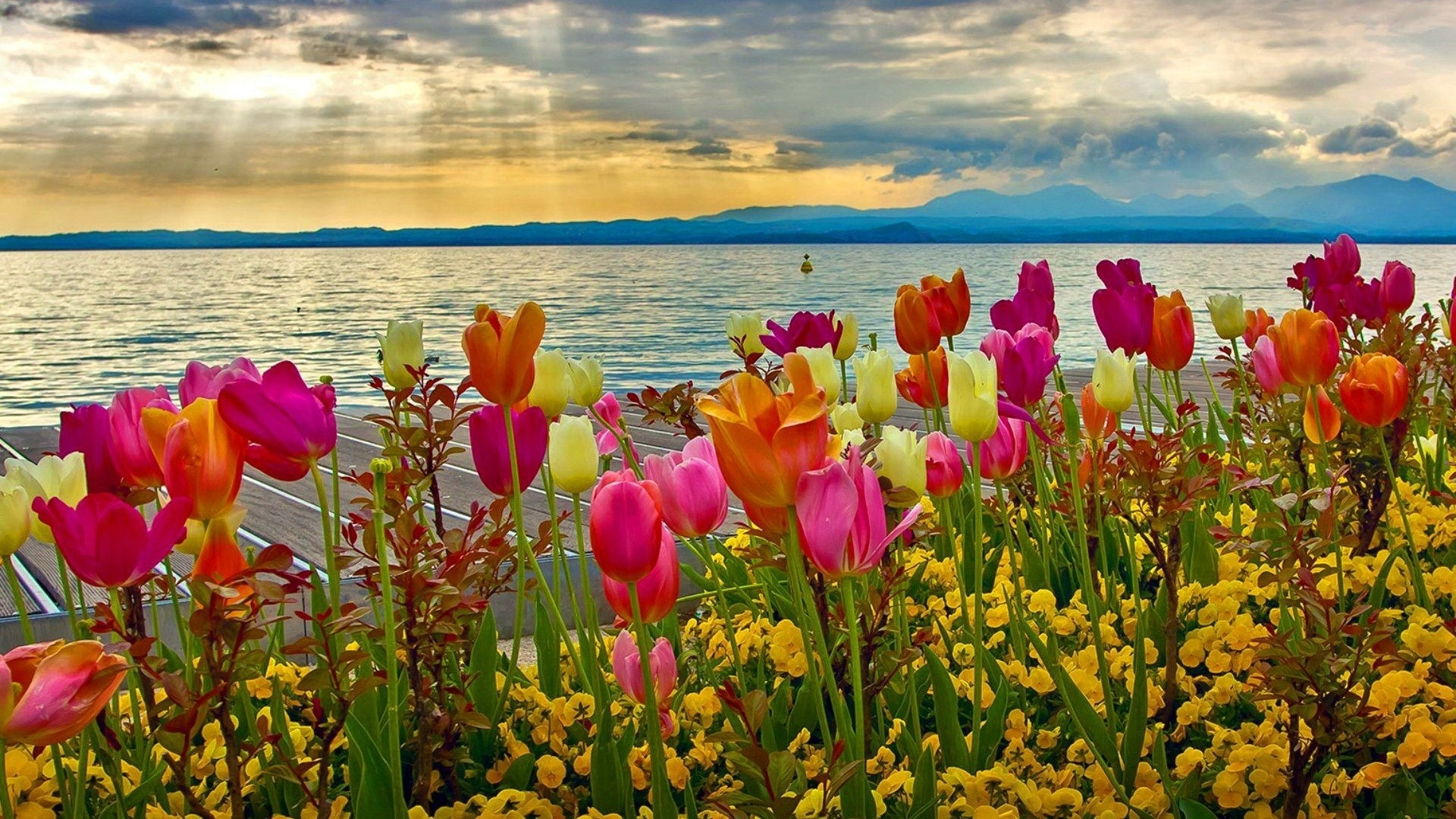 10 Latest Spring Backgrounds For Desktop FULL HD 1920×1080 For PC Desktop