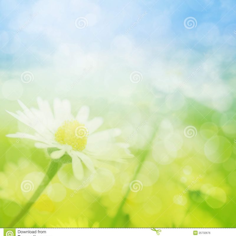 10 Latest Free Summer Background Images FULL HD 1080p For PC Desktop 2018 free download spring or summer abstract background with bokeh stock illustration 800x800