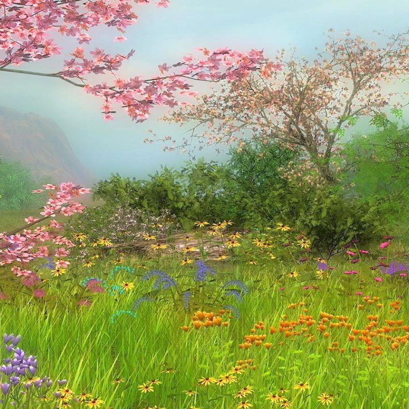 10 New Spring Scenery Wallpaper Widescreen FULL HD 1920×1080 For PC Desktop 2020 free download spring scenes wallpaper 42 images 800x800