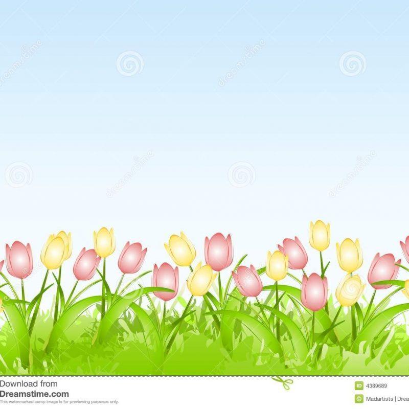 10 Best Spring Background Images Free FULL HD 1920×1080 For PC Desktop 2018 free download spring tulips flower border background stock image image of floral 800x800