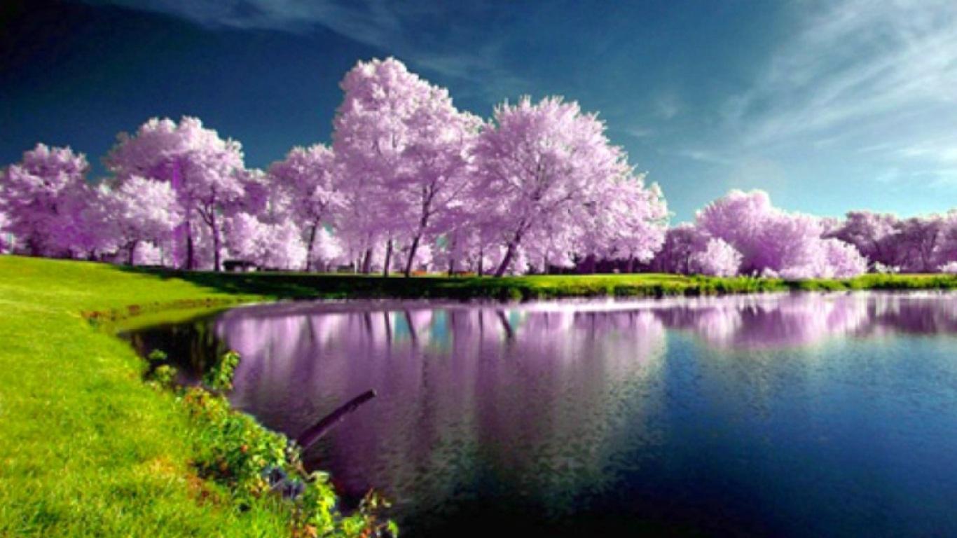 spring wallpapers for desktop - wallpapersafari
