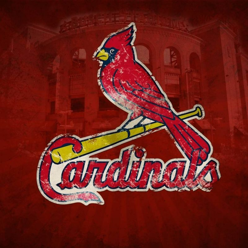 10 Best St Louis Cardinals Background FULL HD 1920×1080 For PC Desktop 2018 free download st louis cardinals desktop wallpapers wallpaper cave 1 800x800