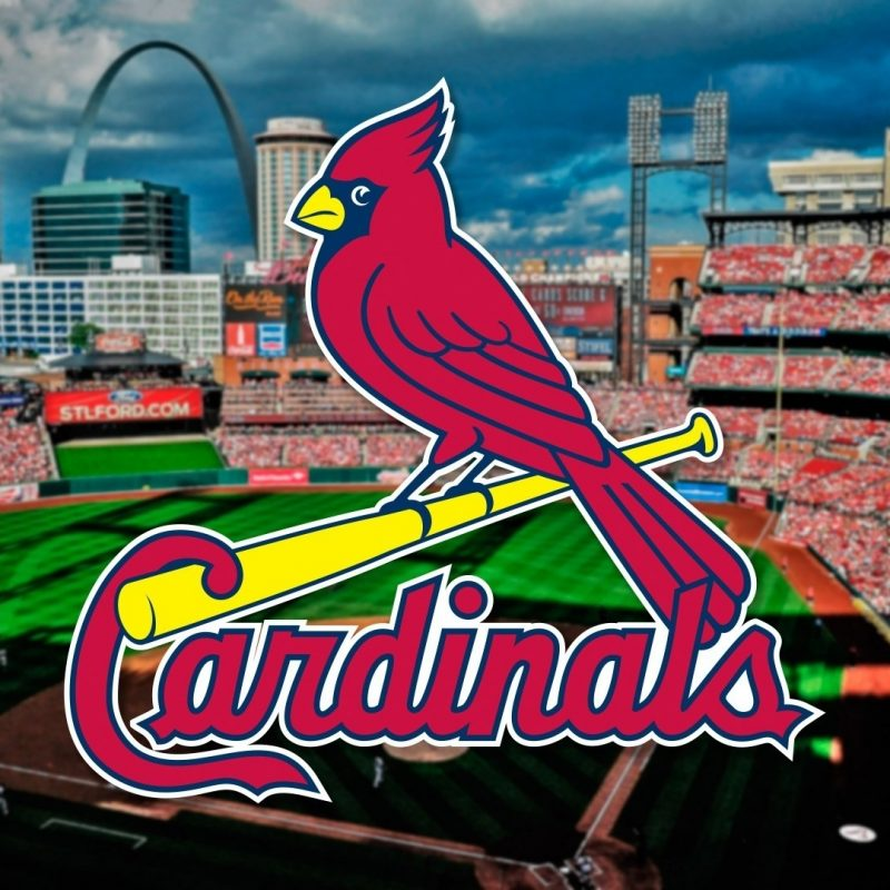 10 Best St Louis Cardinals Background FULL HD 1920×1080 For PC Desktop 2018 free download st louis cardinals iphone wallpaper 60 images 1 800x800