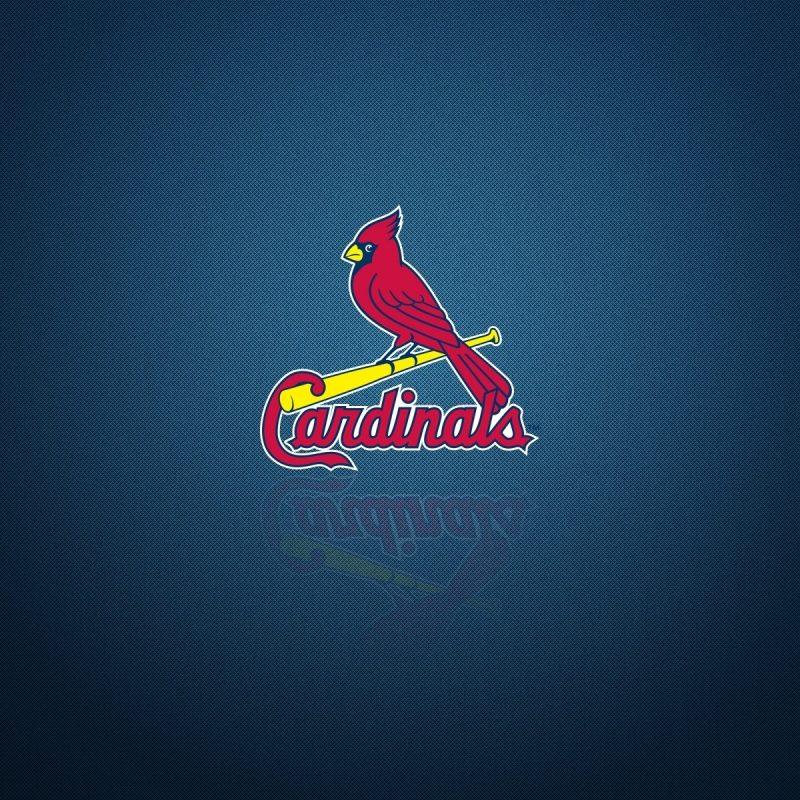 10 Latest St Louis Cardinals Logo Wallpaper FULL HD 1080p For PC Desktop 2020 free download st louis cardinals logo backgrounds pixelstalk 1 800x800