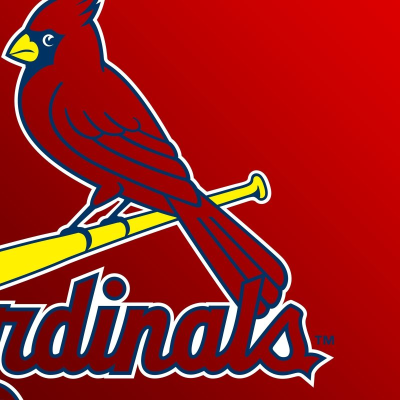 10 Latest St Louis Cardinals Hd Wallpaper FULL HD 1080p For PC Desktop 2018 free download st louis cardinals logo e29da4 4k hd desktop wallpaper for 6 800x800