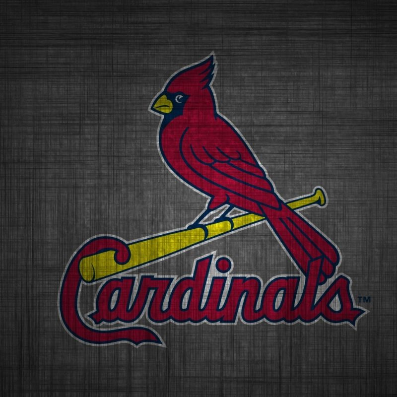 10 Latest St Louis Cardinals Wallpaper FULL HD 1920×1080 For PC Desktop 2018 free download st louis cardinals wallpapers in hd quality for desktop and mobile 800x800