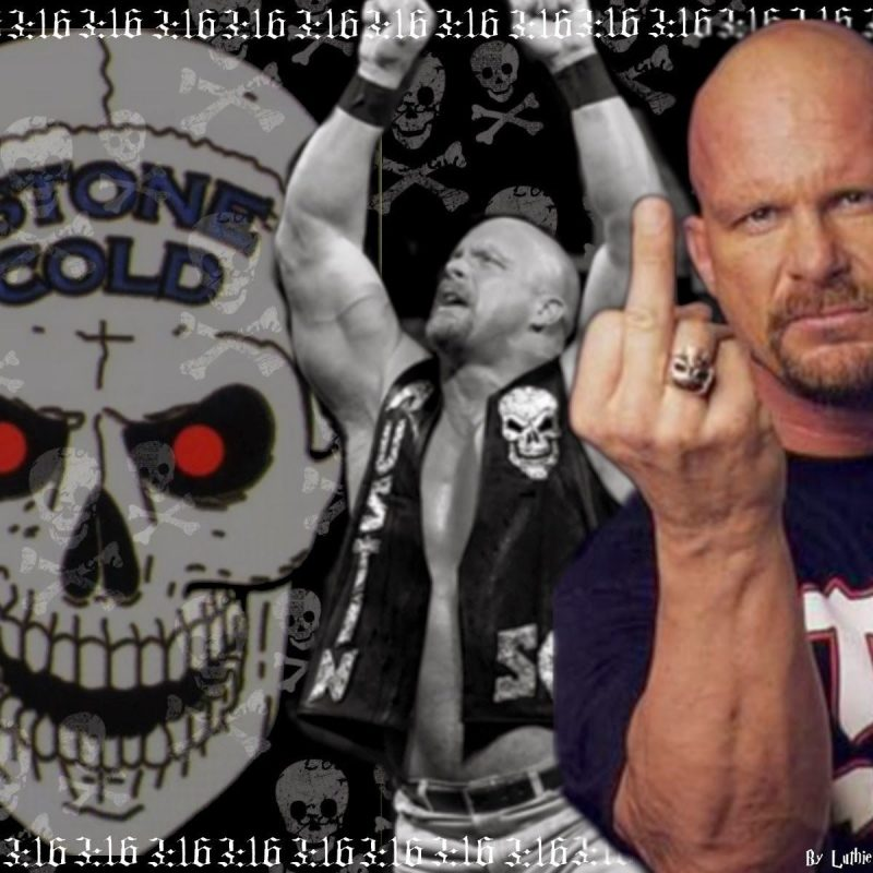 10 New Stone Cold Steve Austin Wallpaper FULL HD 1920×1080 For PC Background 2018 free download stone cold steve austin wallpaper google search stone cold steve 800x800