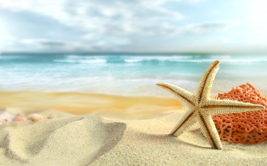 10 Latest Summer Pictures For Desktop FULL HD 1080p For PC Desktop 2018 free download summer wallpaper desktop backgrounds media file pixelstalk 1024x640