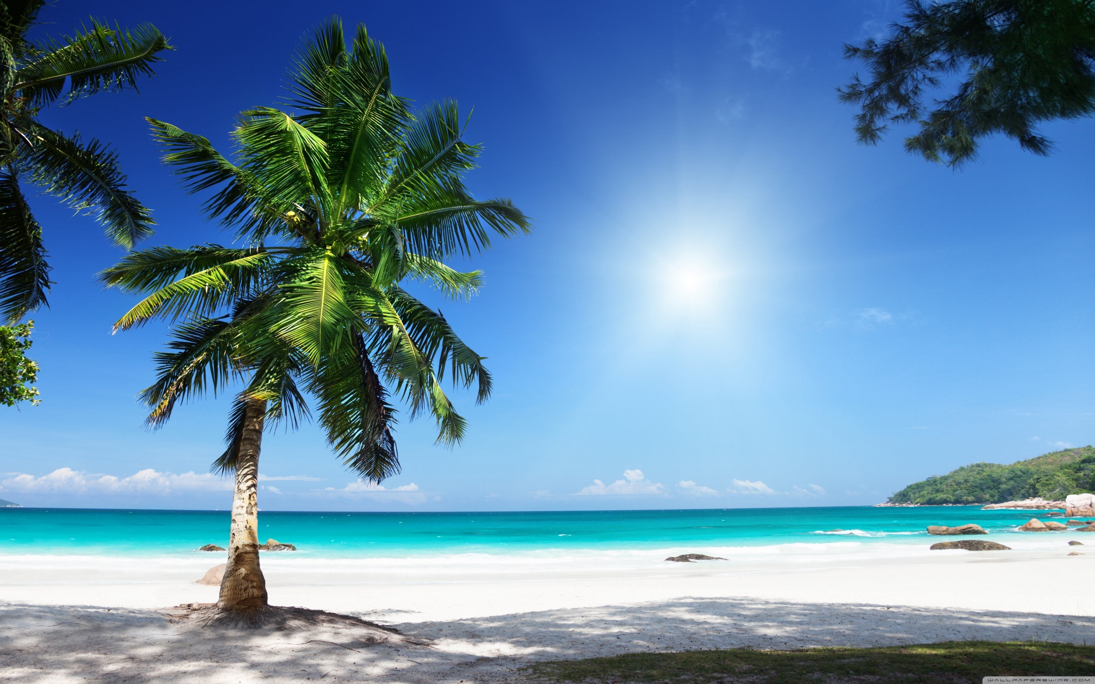 sunny beach ❤ 4k hd desktop wallpaper for 4k ultra hd tv • tablet