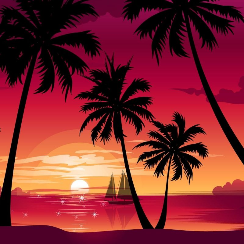 10 Latest Palm Tree Sunset Wallpaper FULL HD 1920×1080 For PC Desktop 2018 free download sunset exotic and stunning 417816 hd desktop backgrounds 800x800