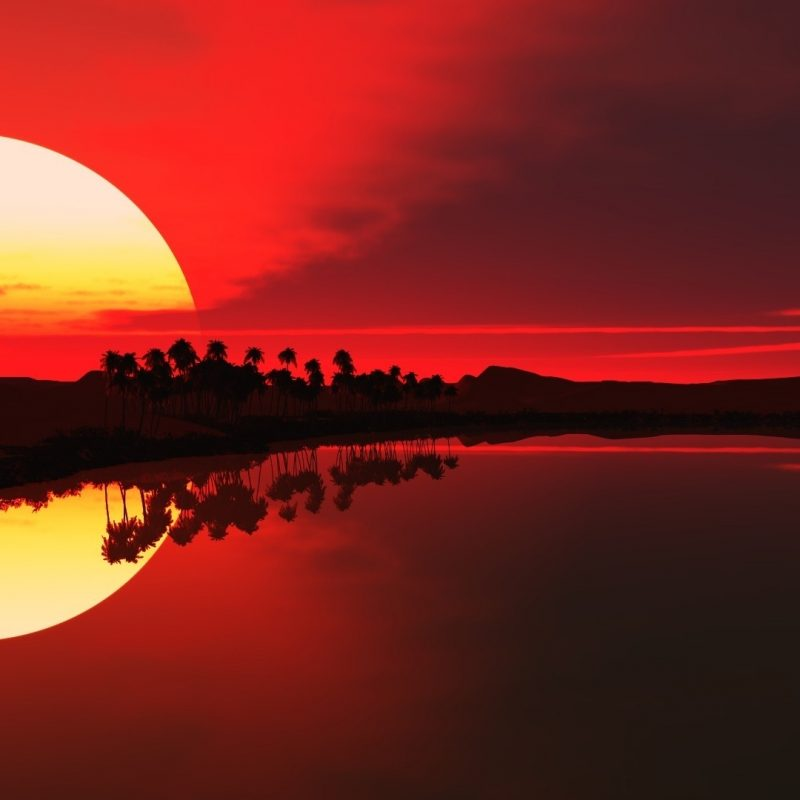 10 Latest Sunset Wallpaper 1920X1080 FULL HD 1080p For PC Desktop 2020 free download sunset nature reflection sun sunlight trees water sky 800x800