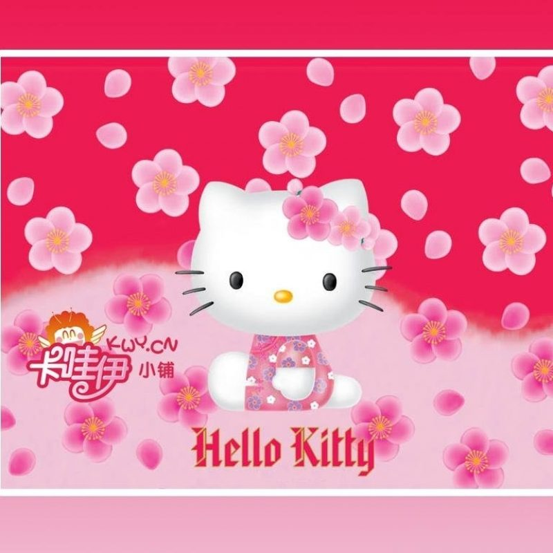 10 Best Hello Kitty Free Wallpaper FULL HD 1920×1080 For PC Background 2018 free download sweetness decoration simple elegance wall blossomings falling flower 800x800
