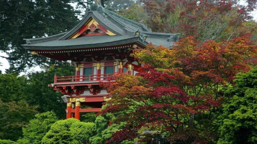 10 Latest Japanese Tea Garden Wallpaper FULL HD 1920×1080 For PC Background 2018 free download tea garden japanese california san francisco gate temples 1024x576