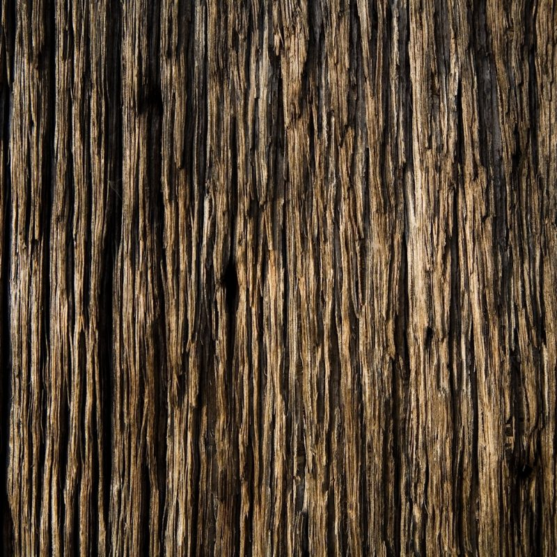 10 Latest Wood Grain Phone Wallpaper FULL HD 1080p For PC Background 2020 free download techcredo wood texture wallpaper collection for android 800x800