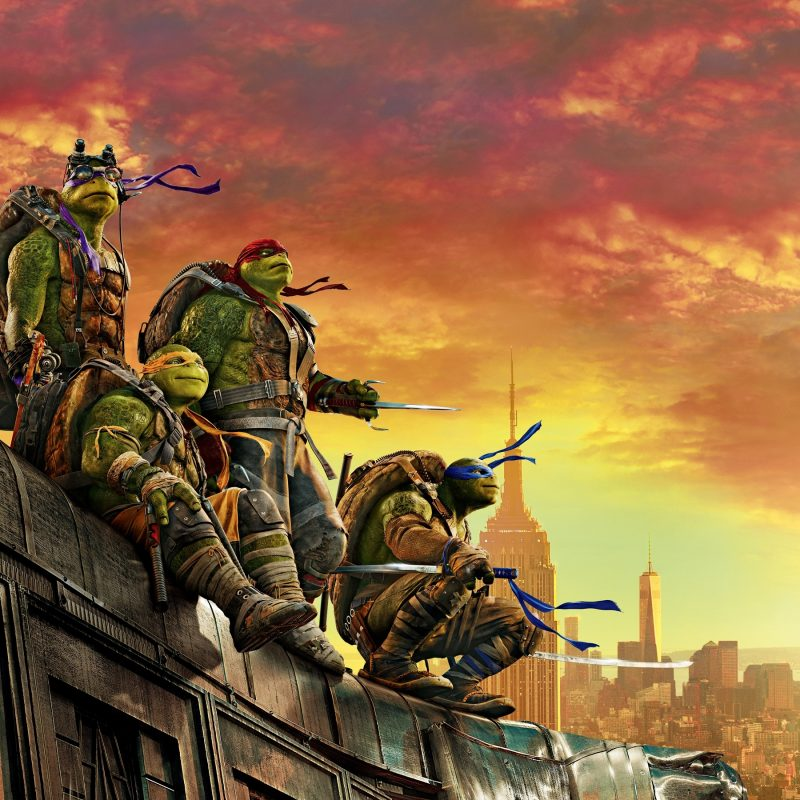 10 New Ninja Turtles Hd Wallpaper FULL HD 1080p For PC Desktop 2018 free download teenage mutant ninja turtle out of the shadows 5k wallpapers hd 800x800
