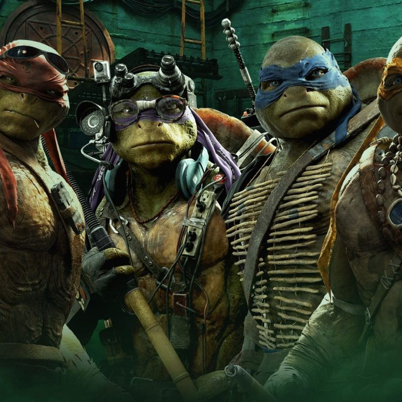 10 New Ninja Turtles Hd Wallpaper FULL HD 1080p For PC Desktop 2018 free download teenage mutant ninja turtles full hd fond decran and arriere plan 800x800