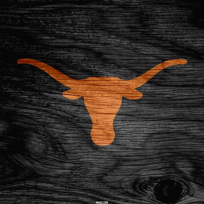 10 New Texas Longhorns Screen Savers FULL HD 1920×1080 For PC Desktop 2018 free download texas longhorn wallpaper screensavers 48 images 1 800x800