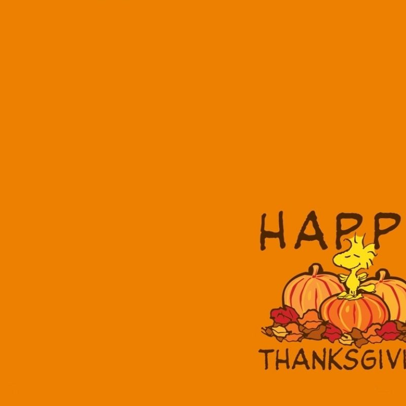 10 Most Popular Thanksgiving Desktop Backgrounds Free FULL HD 1920×1080 For PC Background 2018 free download thanksgiving desktop backgrounds free download 6 800x800