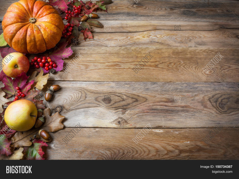 10 New Fall Thanksgiving Images FULL HD 1080p For PC Background 2021 free download thanksgiving fall image photo free trial bigstock 800x597