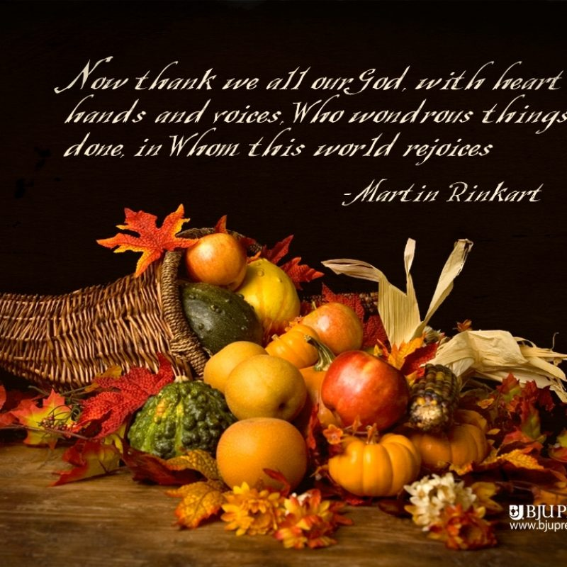 10 Latest Happy Thanksgiving Hd Images FULL HD 1080p For PC Background 2020 free download thanksgiving life happiness and all things under the sun 800x800