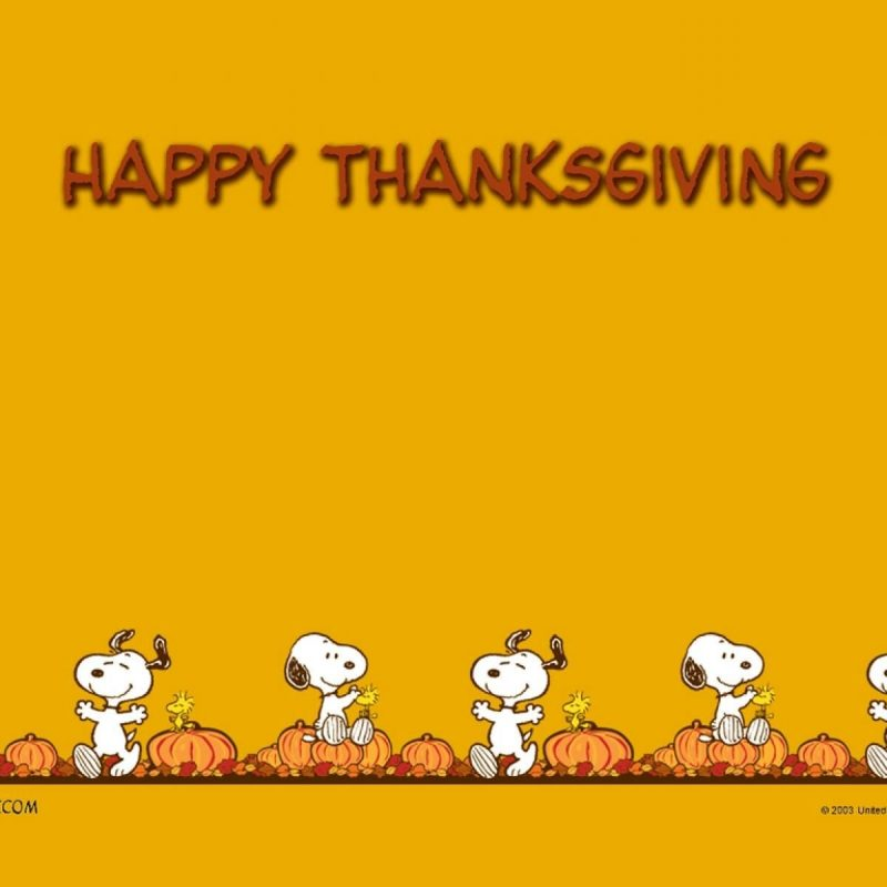 10 Latest Happy Thanksgiving Charlie Brown Wallpaper FULL HD 1920×1080 For PC Background 2018 free download thanksgiving wallpapers wallpapers pinterest thanksgiving 800x800