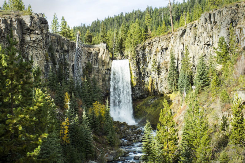 10 Most Popular Oregon Nature Pictures FULL HD 1080p For PC Background 2018 free download the best places to spend time alone in nature in oregon 800x533