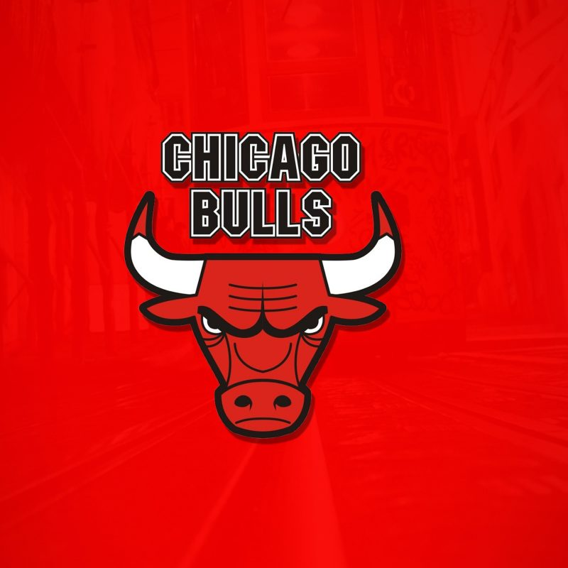 10 Best Chicago Bulls Wallpaper Hd FULL HD 1080p For PC Background 2020 free download the chicago bulls wallpapers hd wallpapers id 17704 2 800x800