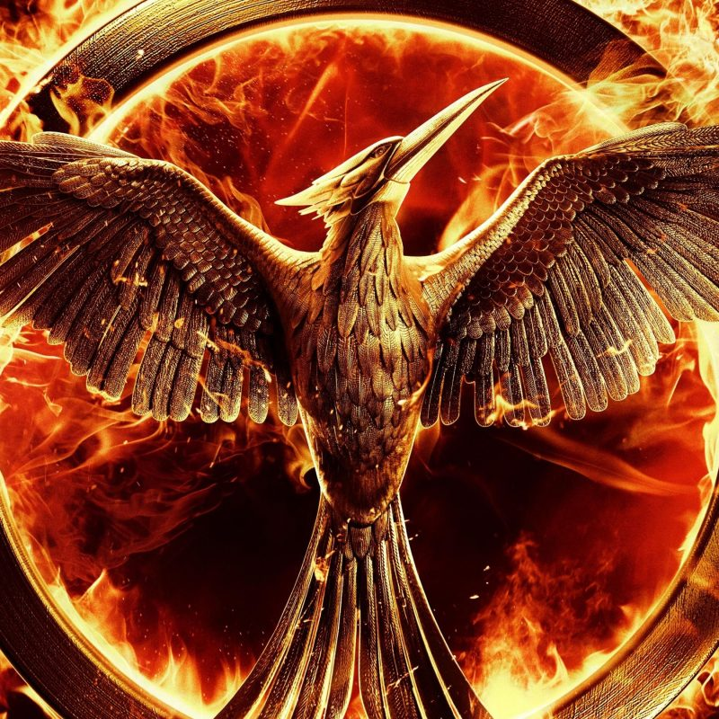 10 Most Popular The Hunger Games Wallpapers FULL HD 1920×1080 For PC Desktop 2018 free download the hunger games mockingjay wallpapers hd wallpapers id 13200 800x800