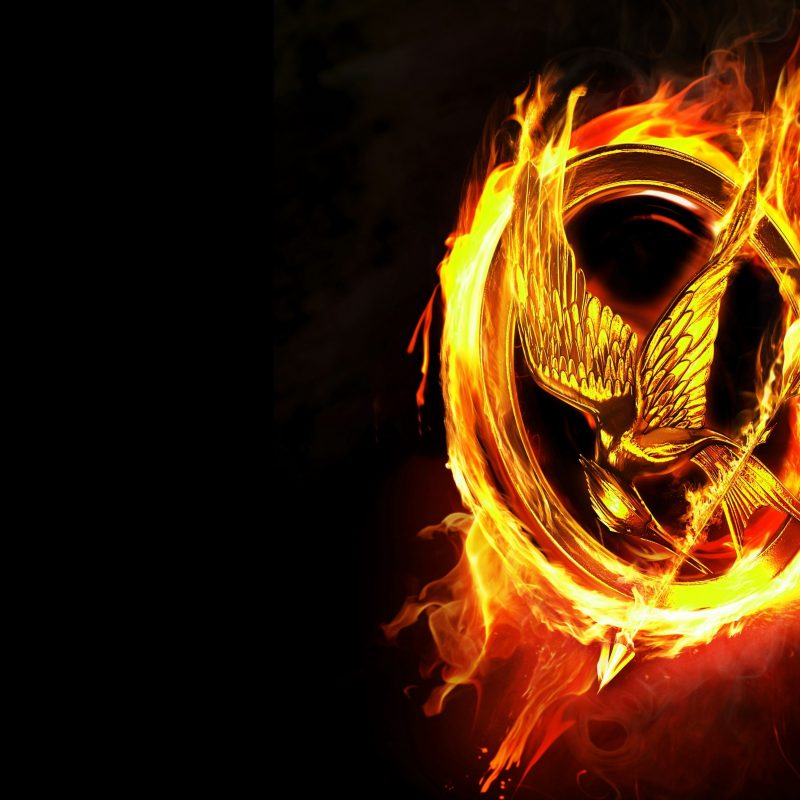 10 Most Popular The Hunger Games Wallpapers FULL HD 1920×1080 For PC Desktop 2018 free download the hunger games wallpaper 23 800x800