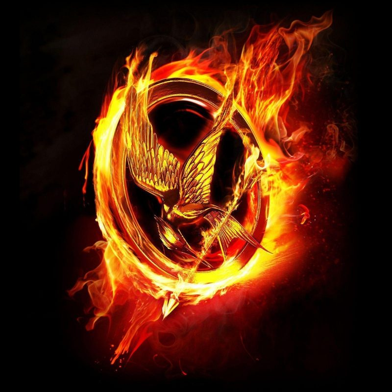 10 Most Popular The Hunger Games Wallpapers FULL HD 1920×1080 For PC Desktop 2018 free download the hunger games wallpapers wallpaper cave 800x800