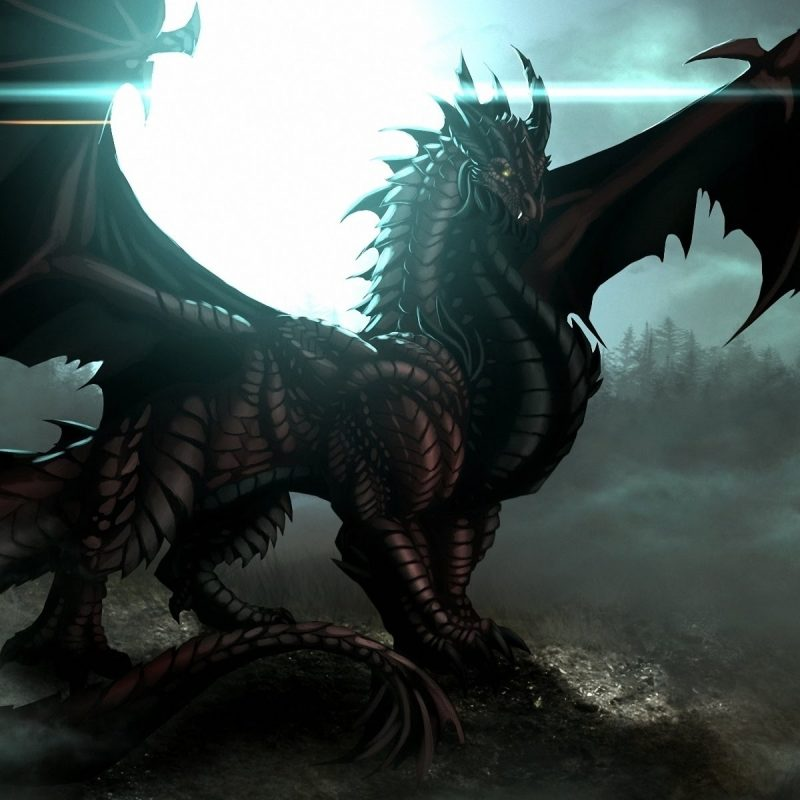 10 Best Pictures Of Ice Dragons FULL HD 1080p For PC Background 2020 free download the ice dragon youtube 800x800