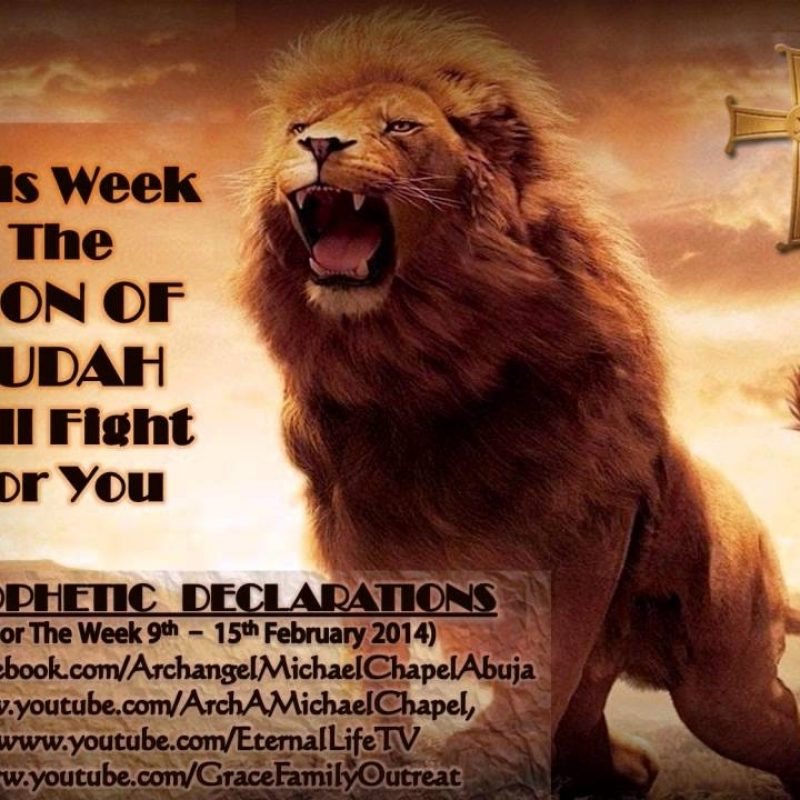 10 Latest Lion Of Judah Images FULL HD 1080p For PC Background 2020 free download the lion of judah will fight for you word ministry youtube 1 800x800