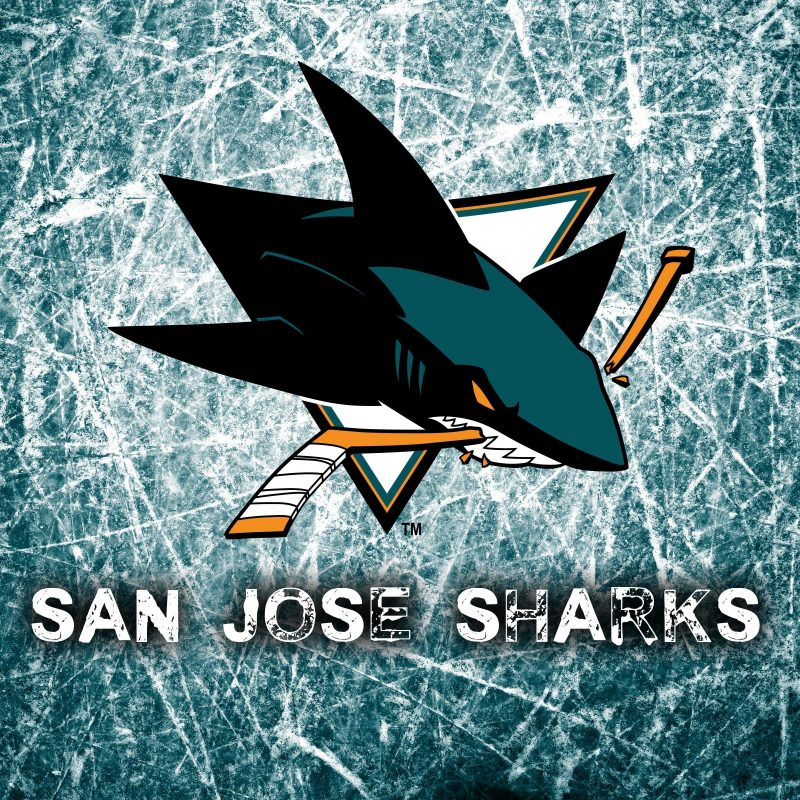 10 New San Jose Sharks Background FULL HD 1920×1080 For PC Desktop 2018 free download the san jose sharks and their travel to the stanley cup through 800x800