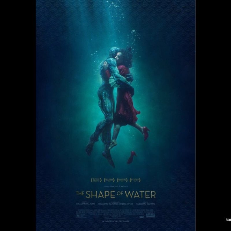 10 Latest The Shape Of Water Wallpaper FULL HD 1080p For PC Background 2018 free download the shape of water movie wallpaper 1 800x800