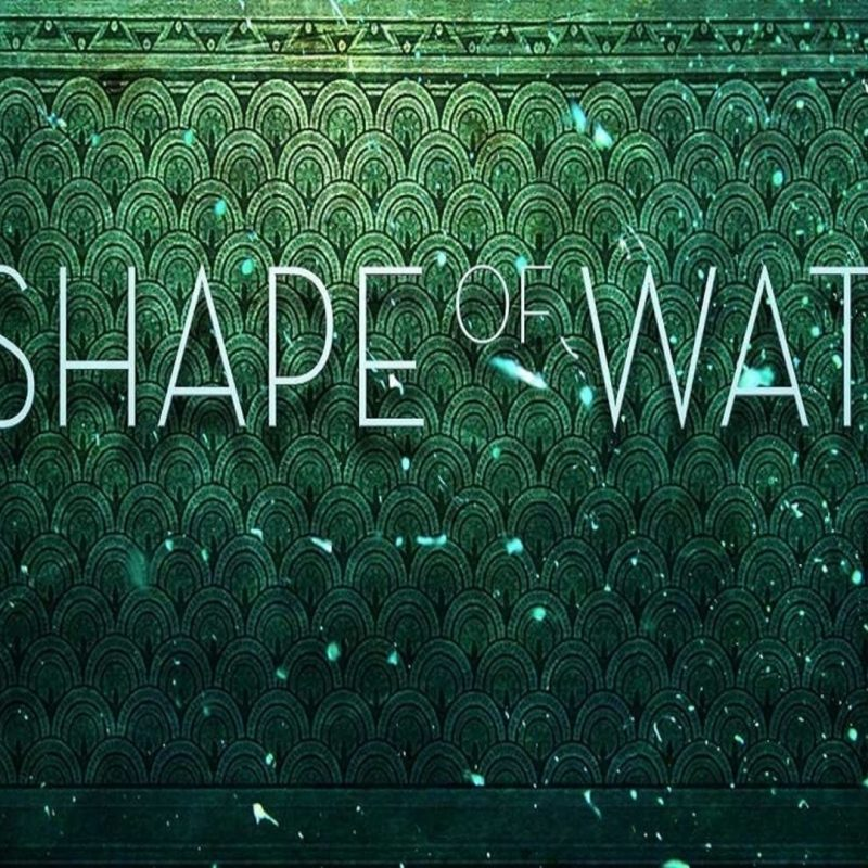 10 Latest The Shape Of Water Wallpaper FULL HD 1080p For PC Background 2018 free download the shape of water wallpapers wallpaper cave 800x800