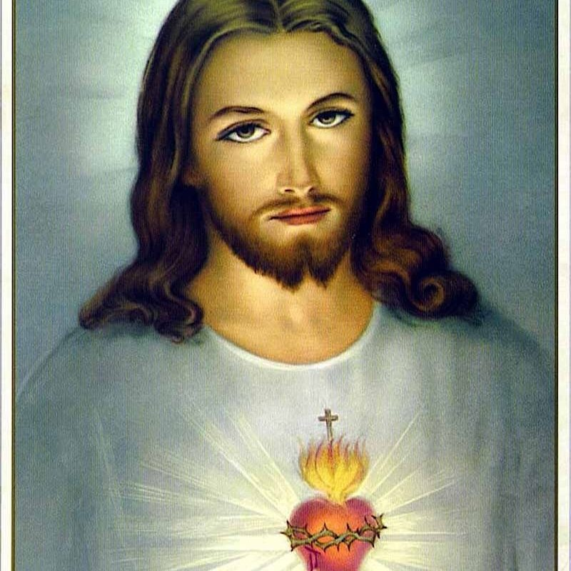 10 Top Heart Of Jesus Image FULL HD 1080p For PC Desktop 2020 free download the unfathomable love of jesus christ is symbolizedthe burning 800x800