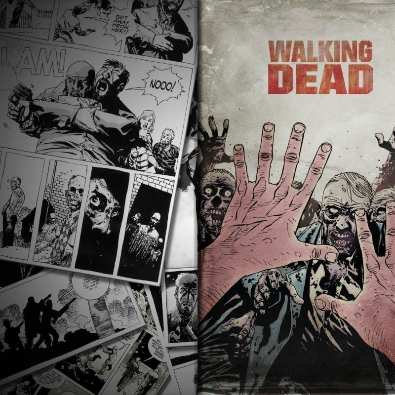 10 Top The Walking Dead Comics Wallpaper FULL HD 1920×1080 For PC Desktop 2018 free download the walking dead 10 wallpaper comic wallpapers 26722 800x800
