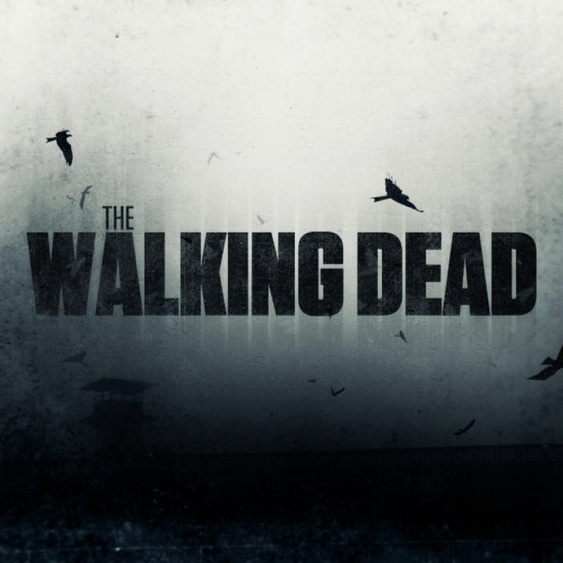 10 Top Walking Dead Desktop Wallpaper FULL HD 1080p For PC Background 2020 free download the walking dead hd desktop wallpapers 7wallpapers 800x800