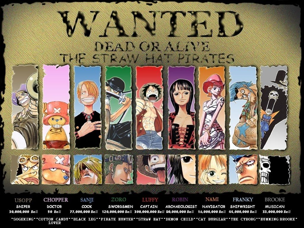 10 Best One Piece Whole Crew FULL HD 1080p For PC Desktop 2020 free download the whole crew because im a little geeky pinterest 1024x768