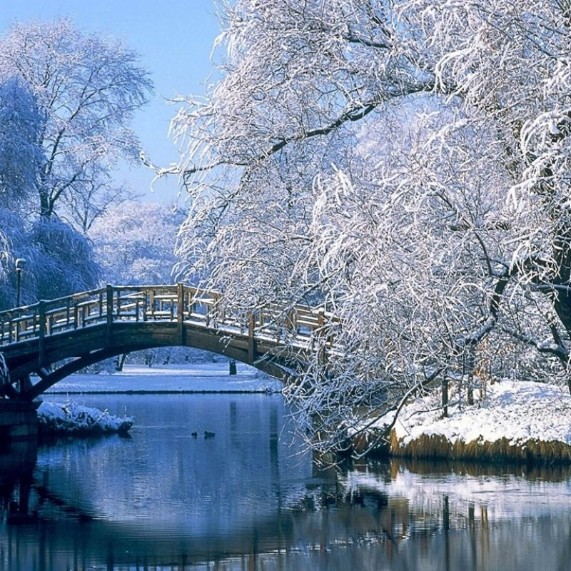 10 Most Popular Beautiful Winter Landscapes Wallpapers FULL HD 1080p For PC Desktop 2018 free download the winter bridge through a lake beautiful natural landscape 800x800