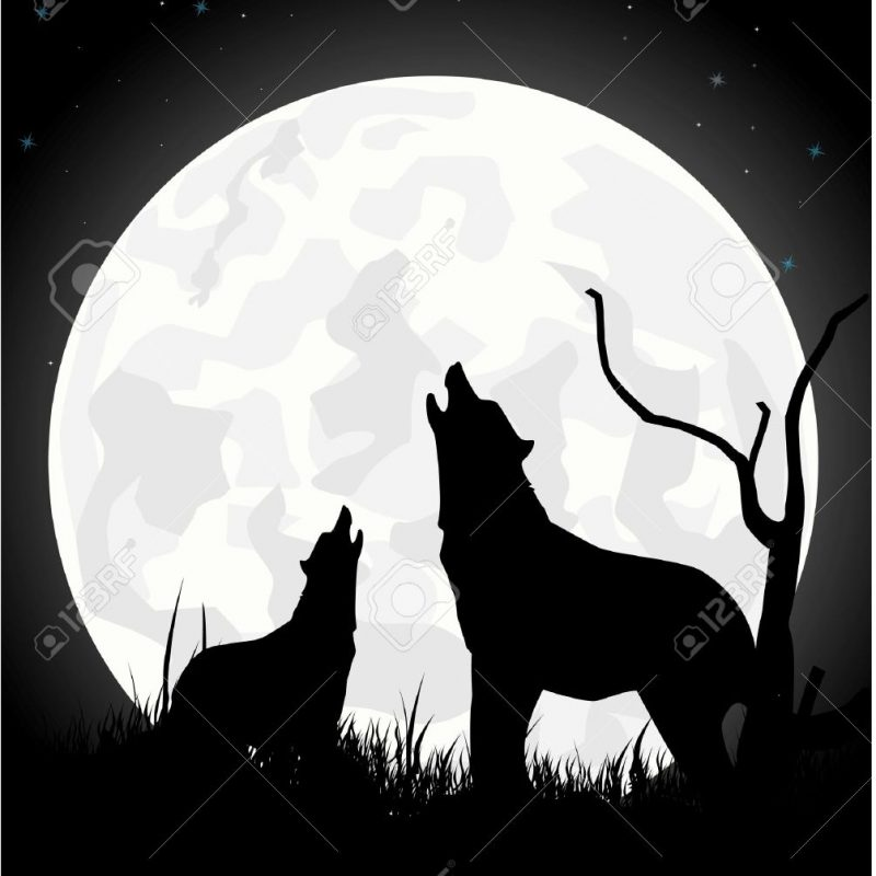 10 Best Werewolf Howling At The Moon Pictures FULL HD 1920×1080 For PC Desktop 2018 free download the wolf howls on the moon at night royalty free cliparts vectors 800x800
