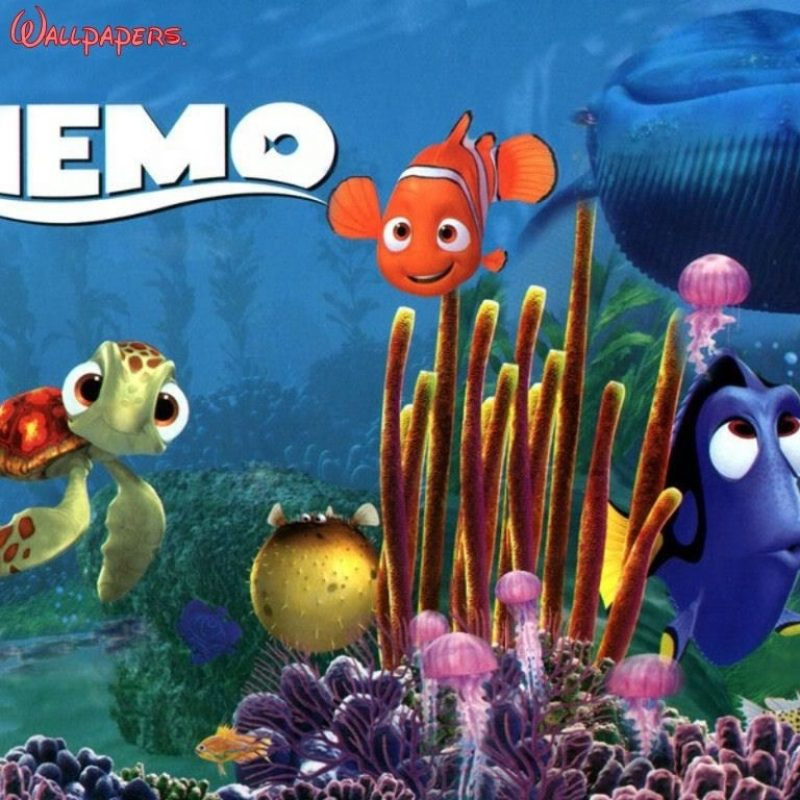 10 New Finding Nemo Movie Wallpaper FULL HD 1920×1080 For PC Background 2018 free download there is buzz lightyear within the floor of certain room in the film 800x800