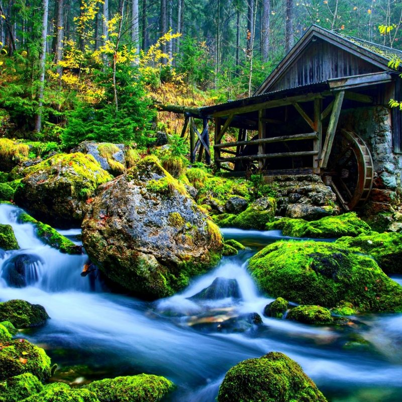 10 Most Popular Nature Wallpaper Hd 3D FULL HD 1920×1080 For PC Desktop 2020 free download these 3d images of nature are the best of the best and make sure 1 800x800