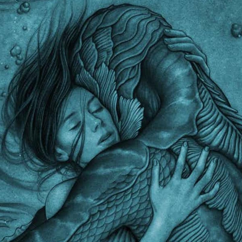 10 Latest The Shape Of Water Wallpaper FULL HD 1080p For PC Background 2020 free download tiff 2017 the shape of water is guillermo del toros finest hour 800x800