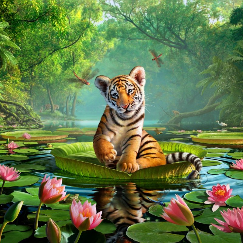 10 Best Images Of Tiger Lily FULL HD 1920×1080 For PC Background 2020 free download tiger lily wall mural tiger lily wallpaper wallsauce 800x800