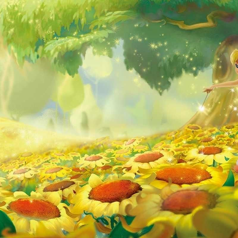 10 Latest Tinker Bell Wall Paper FULL HD 1080p For PC Desktop 2020 free download tinkerbell movie wallpapers wallpaper cave 800x800