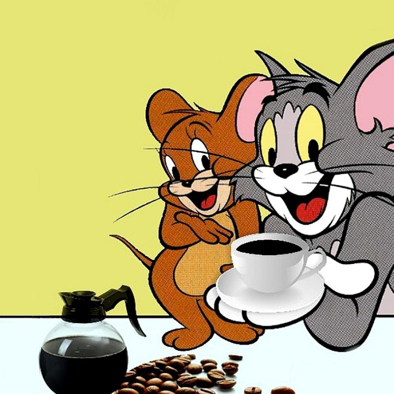10 New Tom And Jerry Wallpaper FULL HD 1080p For PC Desktop 2020 free download tom and jerry wallpaper computer 9952 wallpaper walldiskpaper 800x800