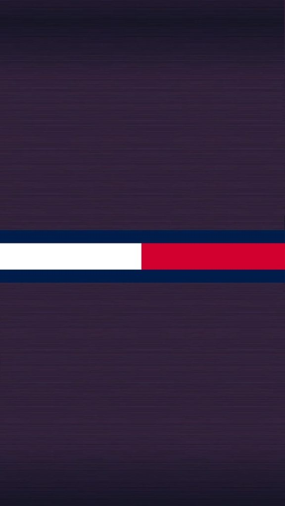 10 New Tommy Hilfiger Logo Wallpaper FULL HD 1080p For PC Background 2020 free download tommy hilfiger wallpapers wallpaper cave 1 576x1024