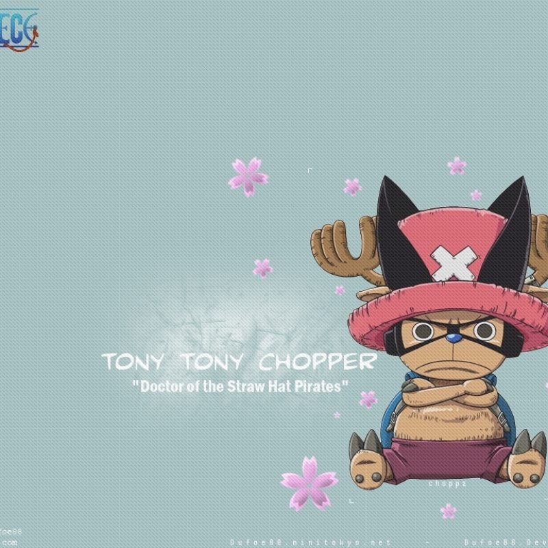 10 Latest One Piece Chopper Wallpaper FULL HD 1080p For PC Background 2020 free download tony tony chopper one piece wallpaper 42921 zerochan anime 800x800