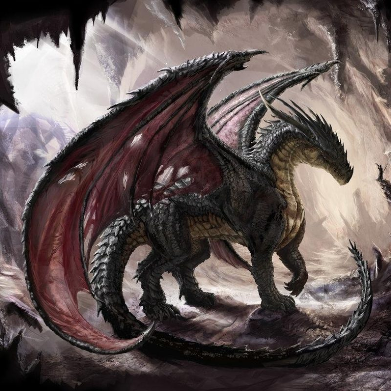 10 Most Popular Hd Dragon Wallpapers 1080P FULL HD 1920×1080 For PC Background 2018 free download top 50 hd dragon wallpapers images backgrounds desktop wallpapers 800x800